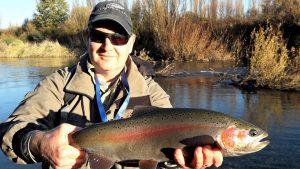 Fly fishing seasons for Taupo