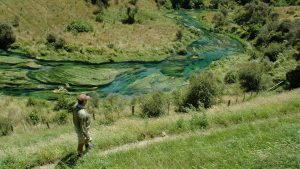 enjoy more fly fishing options in the central north island of NZ