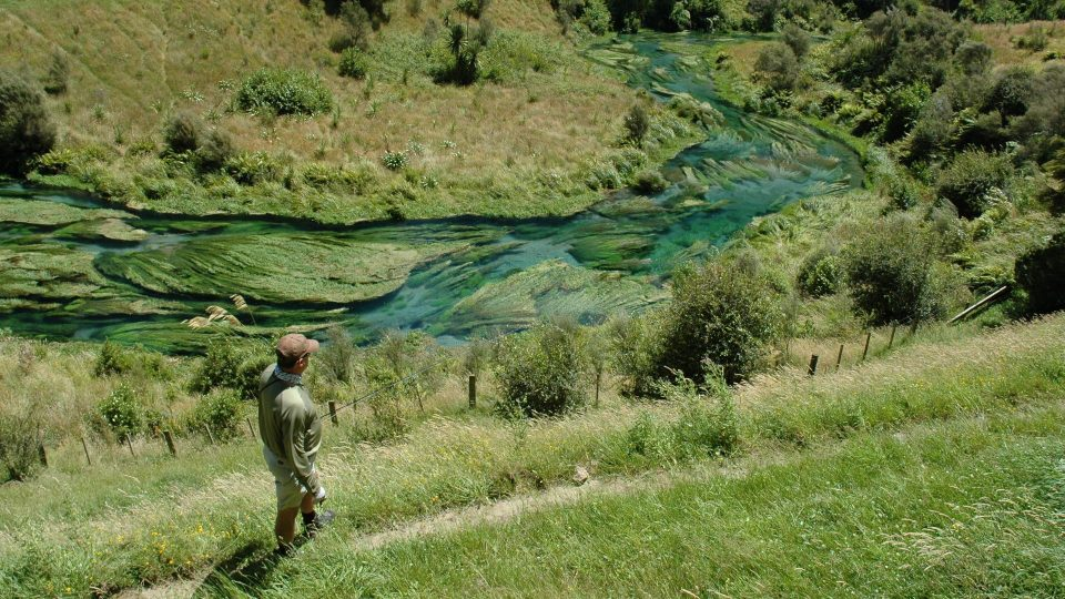 Planning Taupo North Island NZ fly fishing with best guides from NZFCenjoy more fly fishing options in the central north island of NZ