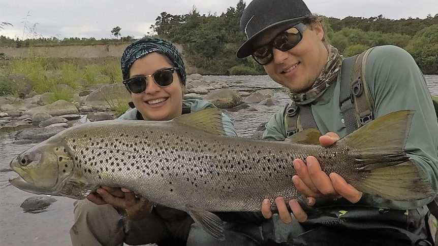 Tongariro summer trophy brown trout fishing guides