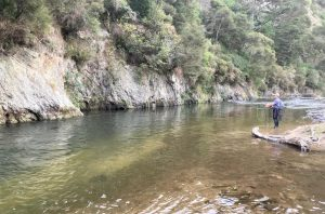NZ North Island Backcountry trout fishing