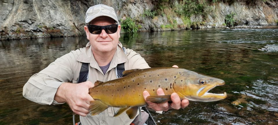 NZ North Island backcountry brown trout