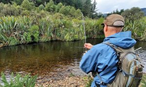 trout fishing on small central North Island NZ stream